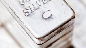 Zilver Sprott