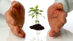 Groei groeimarkten