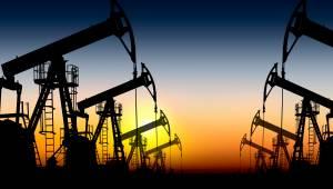do olie super belegger