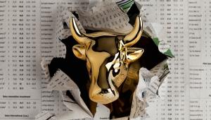 Stierenmarkt goud en goudmijnaandelen