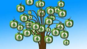 Dividend groeit aan de bomen