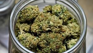 Marihuana ETF