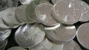 money-silver maple leafs(1)