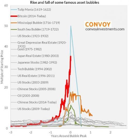 Tulip mania vs bitcoin chart